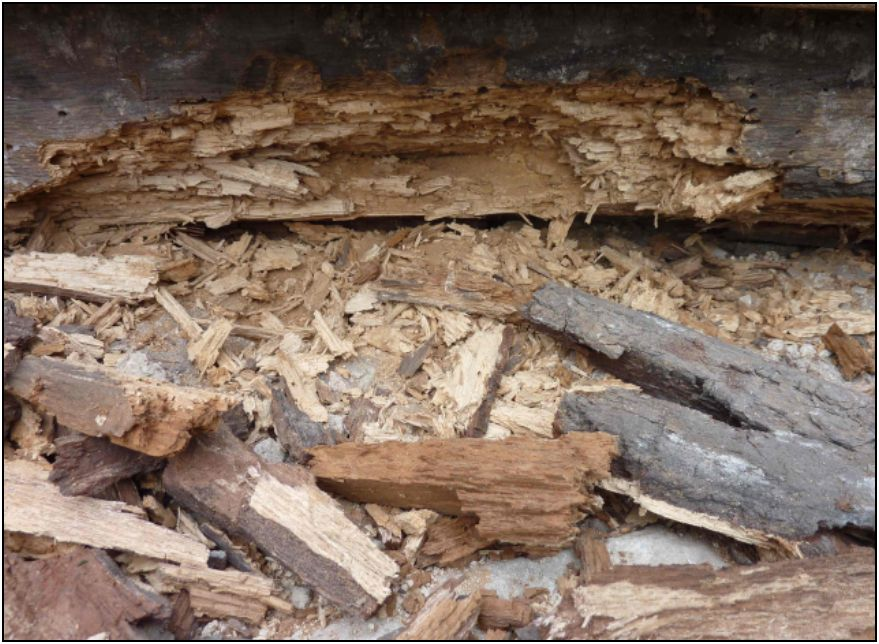 Das Dachtragwerk wies große Schäden auf. So waren beispielsweise die Mauerschwellen durch Feuchteeinwirkung und Schädlingsbefall größtenteils zerstört.